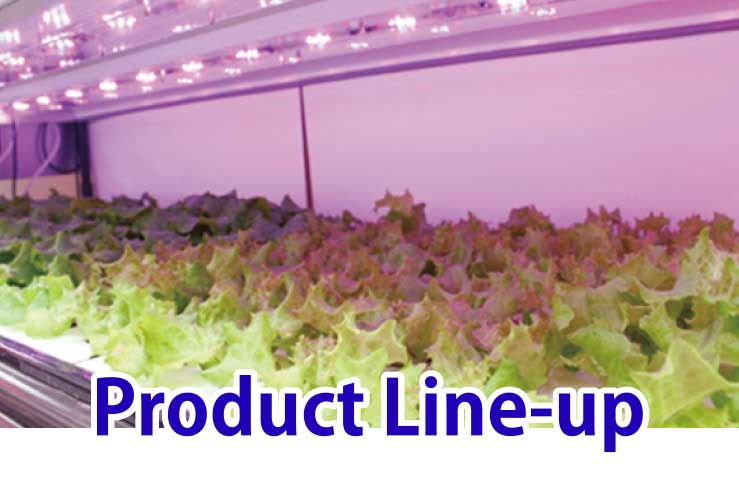 Product Line-up